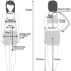 A diagram showing the various measuring areas on the human body